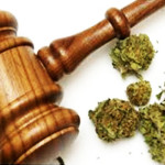 Medical marijuana transportation law 101: Sanilac County, Michigan
