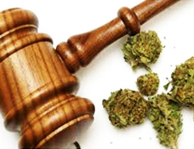 Medical-Marijuana-Transportation-Law-101