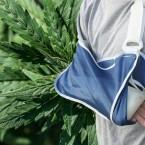 New Study Says Medical Marijuana Could Repair Broken Bones