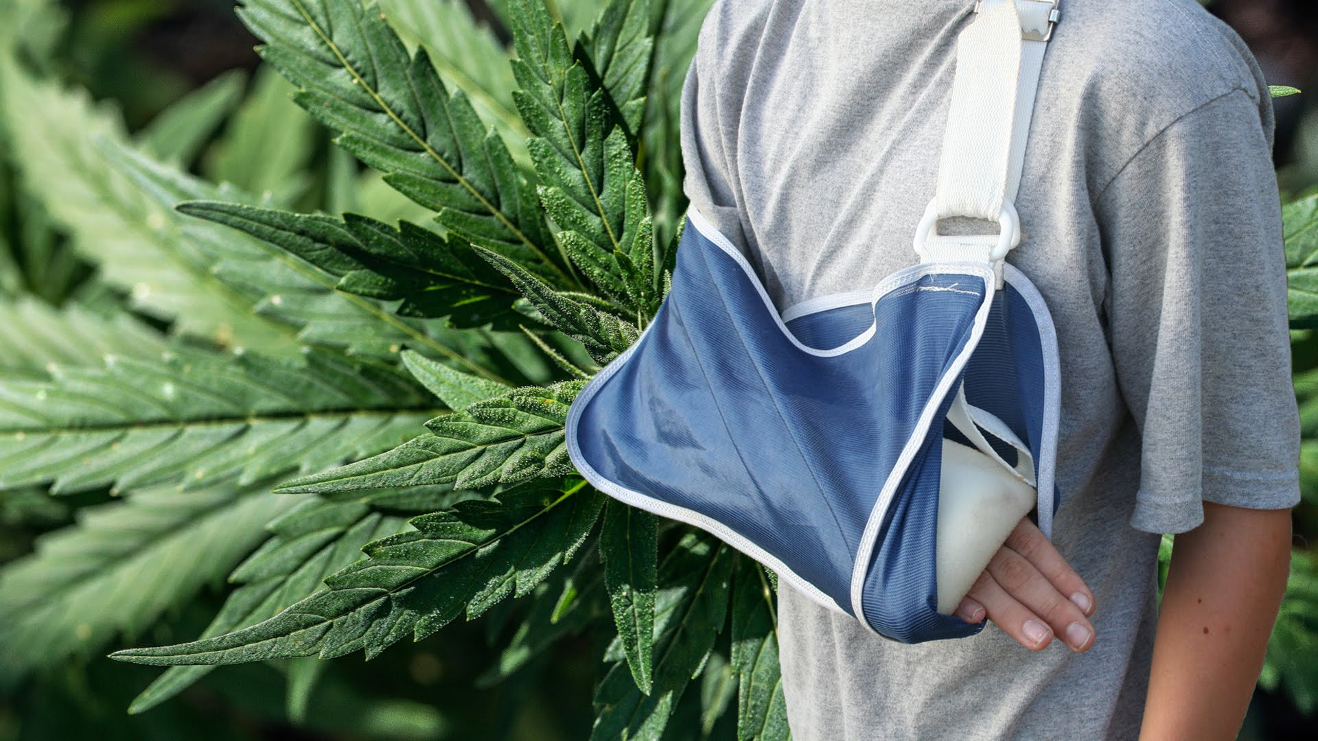 New-Study-Says-Medical-Marijuana-Could-Repair-Broken-Bones