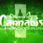 mm epilepsy2