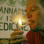 Medical Marijuana-THE-LAST-LINE-OF-DEFENSE-image