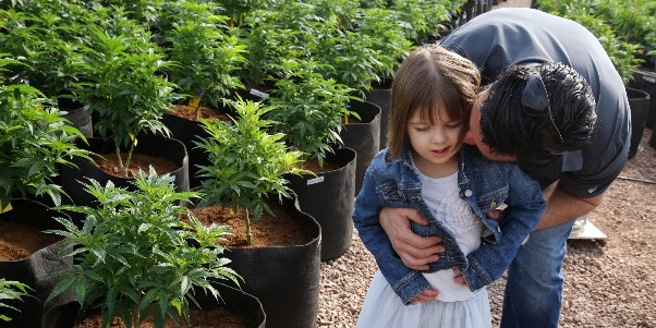 Medical-cannabis-a-fighting-chance-against-autism