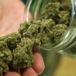 Ohio, One More Joins The Ranks of Legalized Marijuana States!