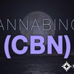 CBN as Medicine