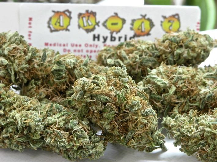 the-ak-47-marijuana-strain