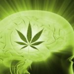 Cannabis as Treatment for Migraine Headaches