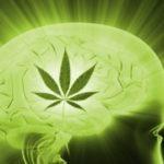 Cannabis as Treatment for Migraine Headaches