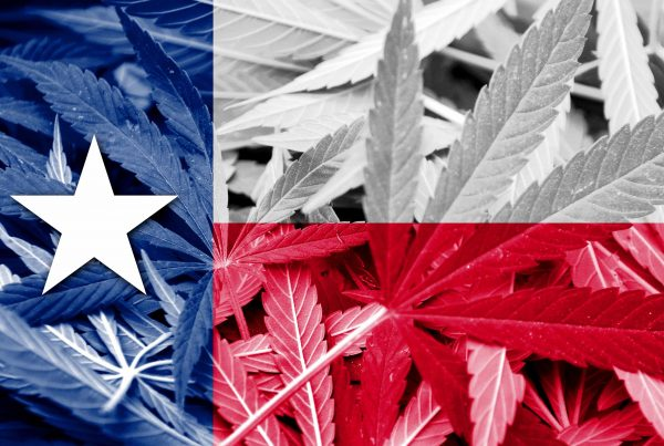 texas-marijuana