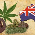 Australia Set to Join Cannabis Export Market