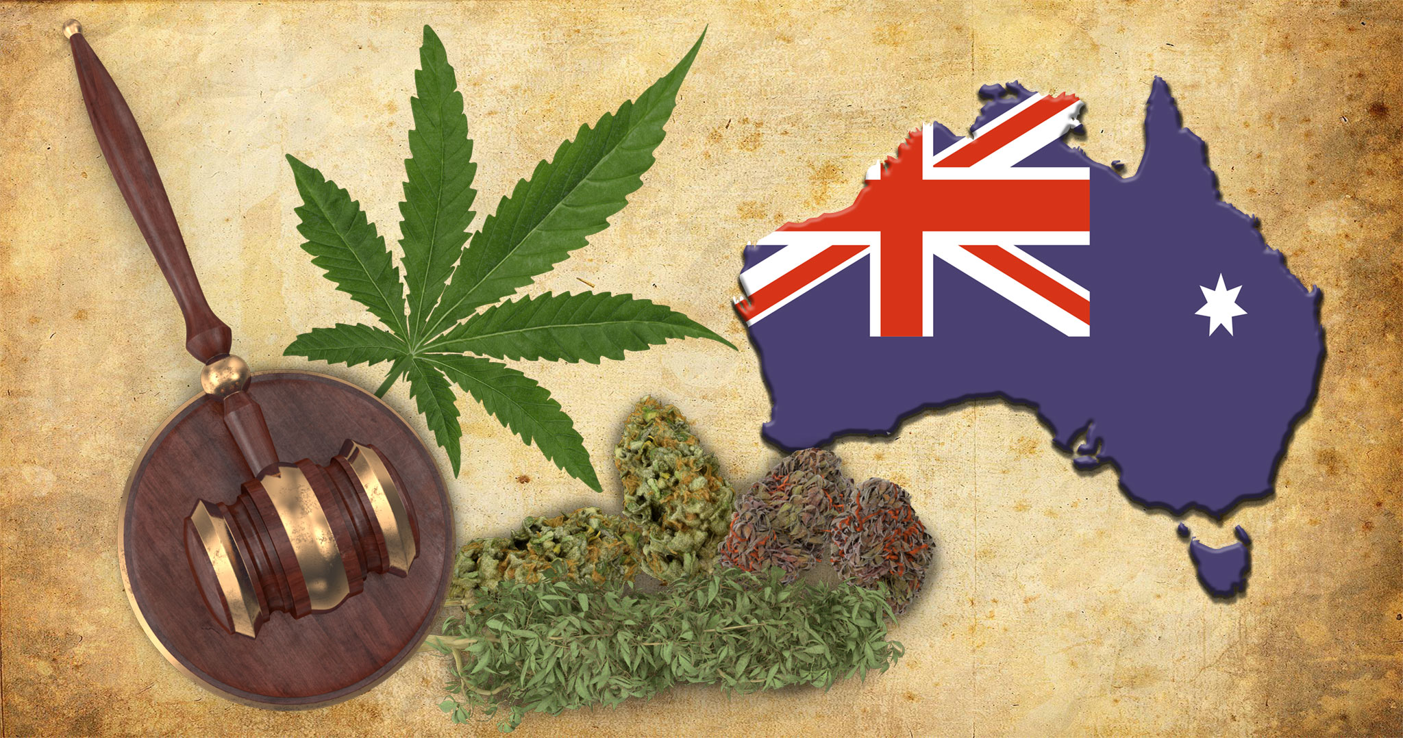 Australia Set to Join Cannabis Export Market