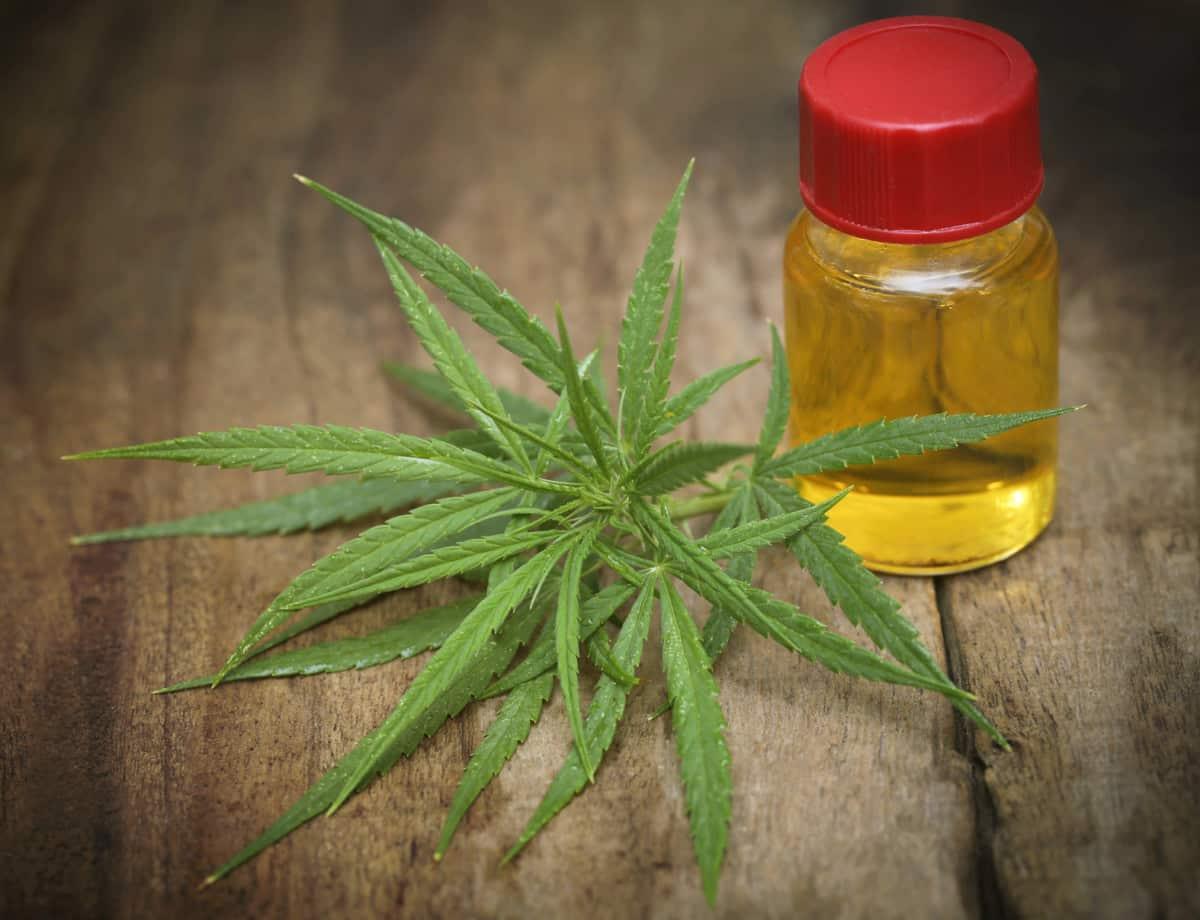 CBD as Preventative Medicine