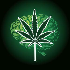 epilepsy cannabinoid
