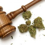 Jeff Sessions's Lawyers Slammed by Federal Judge in Medical Marijuana Case