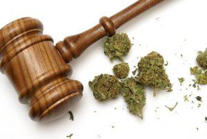 federal judge marijuana sessions