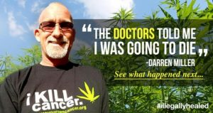 lung cancer cannabis oil
