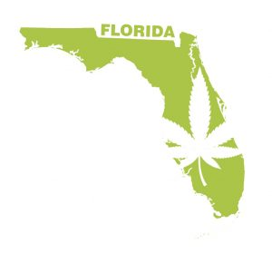 legalization marijuana florida