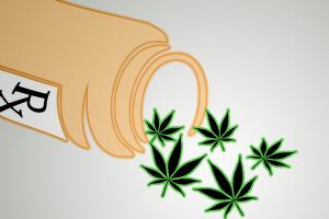 marijuana alternative opioid