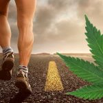 Effects of THC and CBD on Exercise and Performance