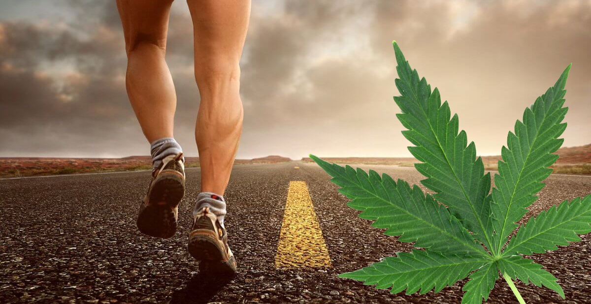 cbd thc exercise performance