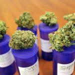 Is Medical Marijuana the Key to Illinois Opioid Menace?