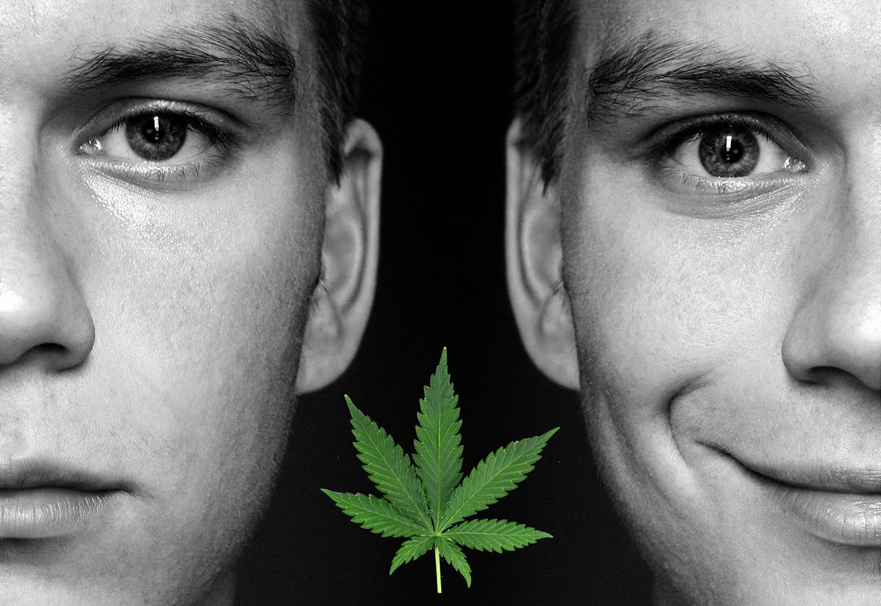 The Potential Benefits of CBD for the Symptoms of Bipolar Disorder
