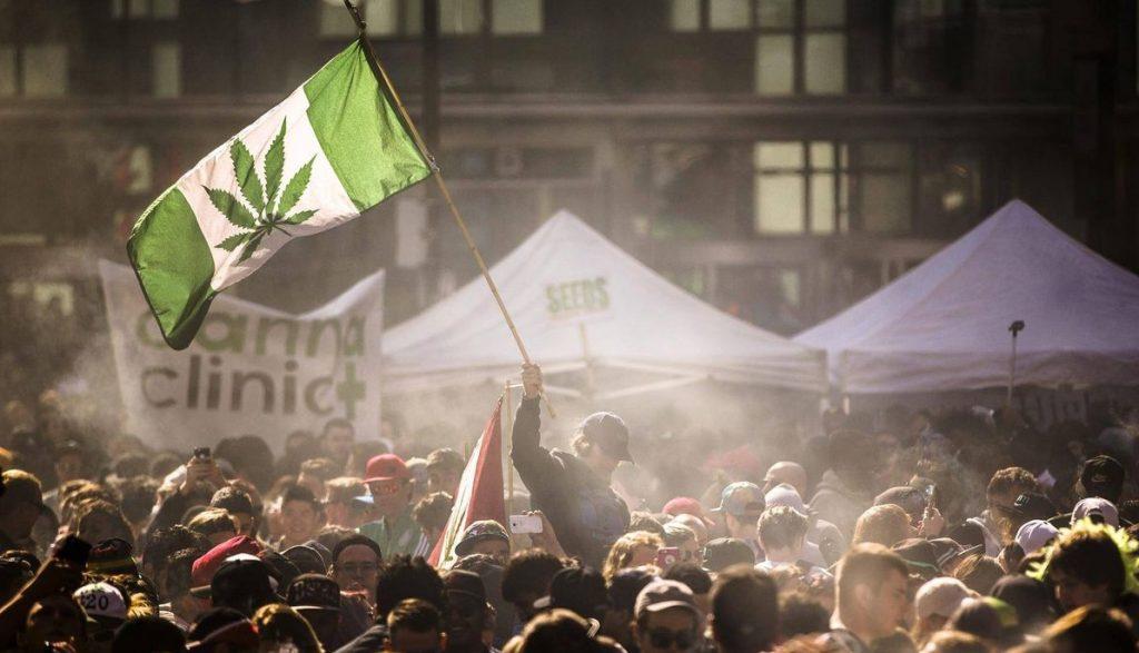 dry herb vaporizer festival