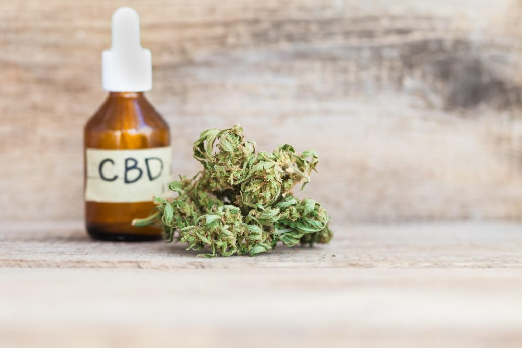 About Anxiety and the Endocannabinoid System