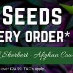 FREE – 3 BEST-SELLING SEEDS WITH YOUR NEXT ORDER!