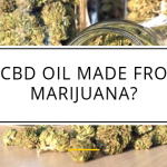 Is CBD Oil Made From Marijuana?