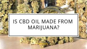 cbd oil from marijuana