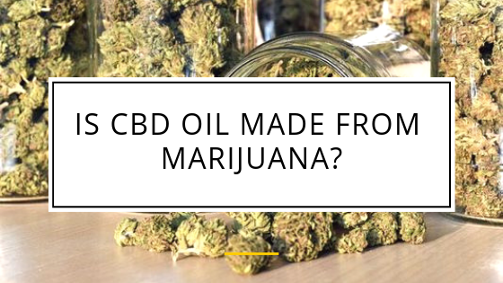 cbd oil from marijuana