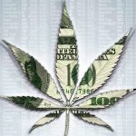 All You Need to Know About Marijuana Penny Stocks