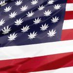 U.S. Marijuana Laws: An End-of-2018 Update