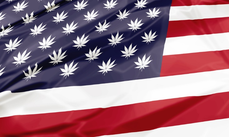 marijuana laws us