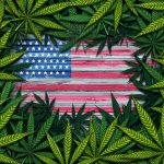 Medical Marijuana in the United States: The Basics