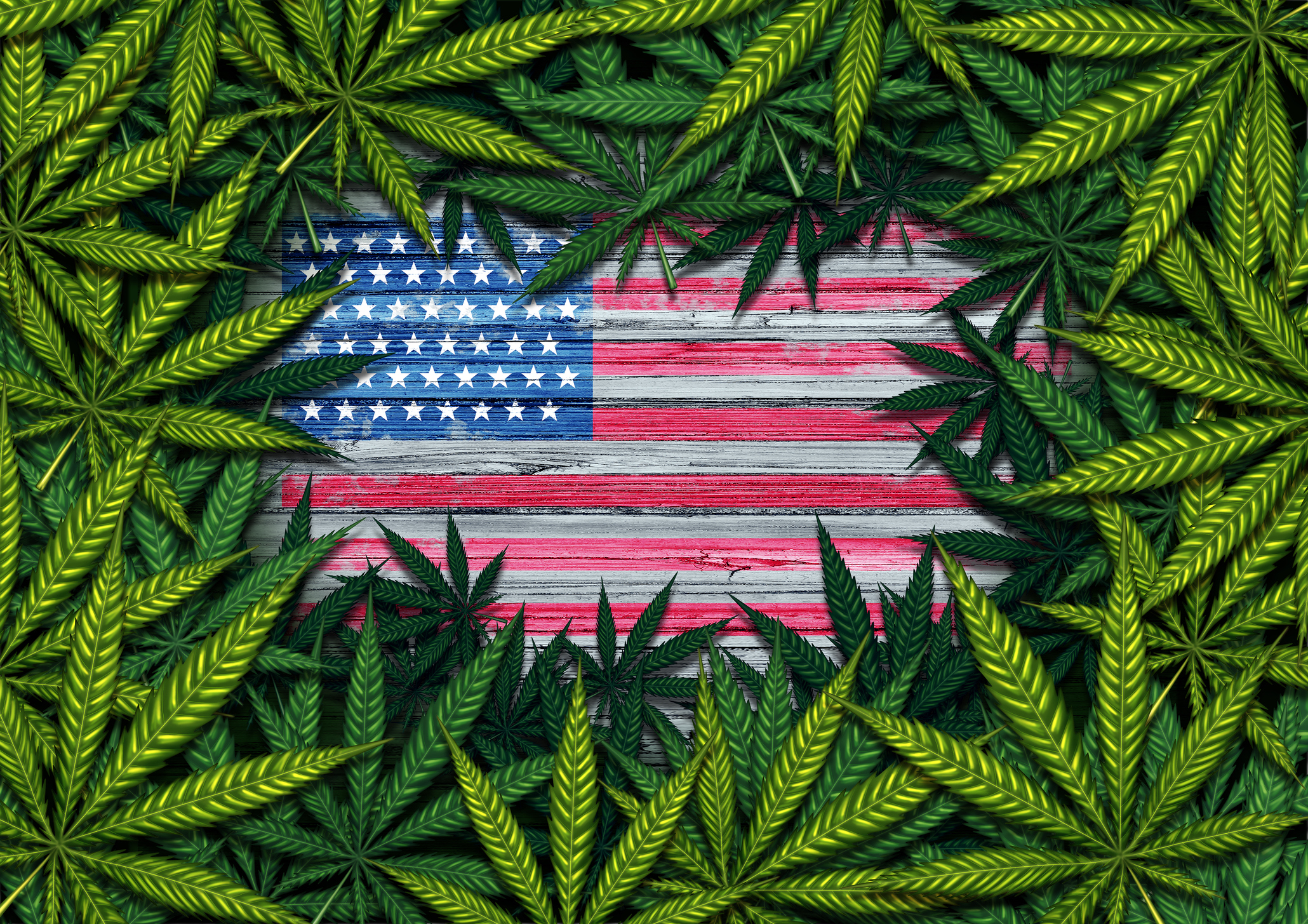 Medical Marijuana in the United States