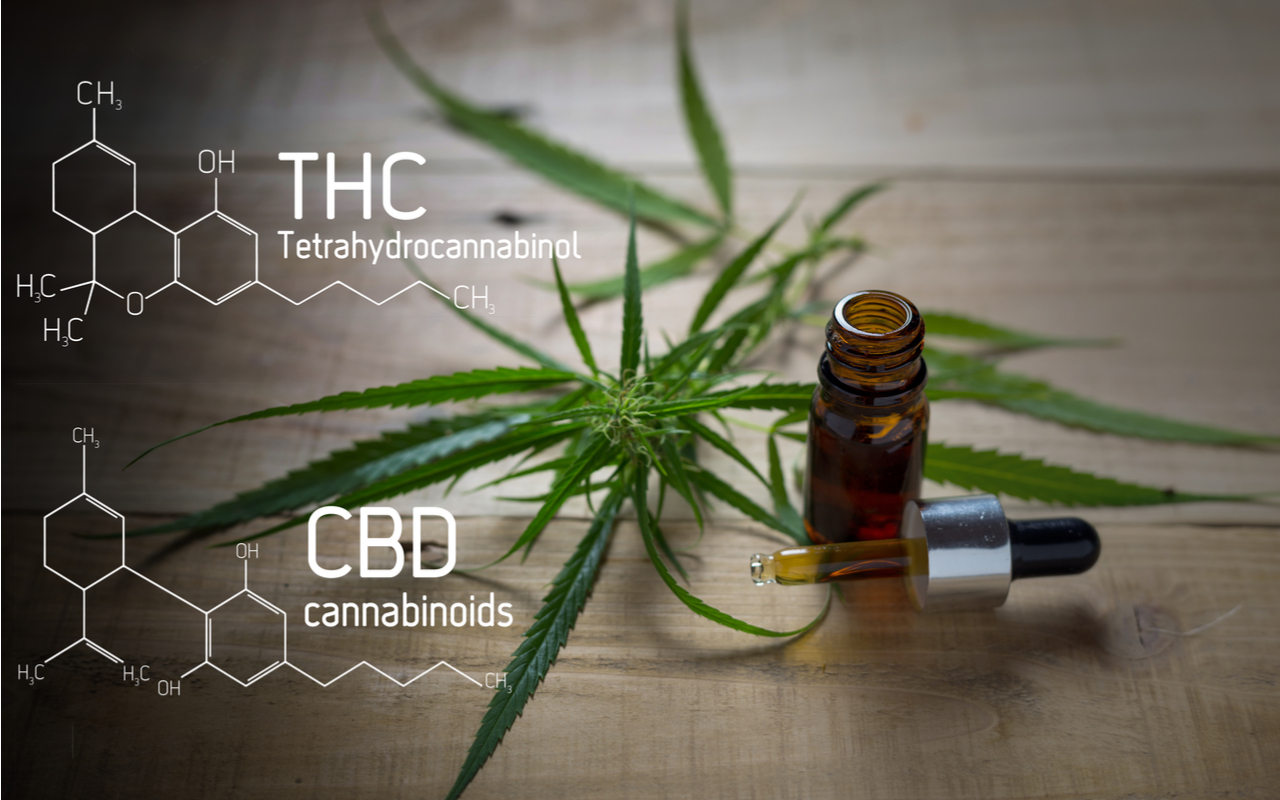 CBD vs. THC: Friends or Foes?