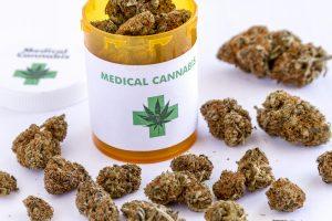 best medical marijuana strains